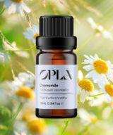 chamomile pure essential oil organic