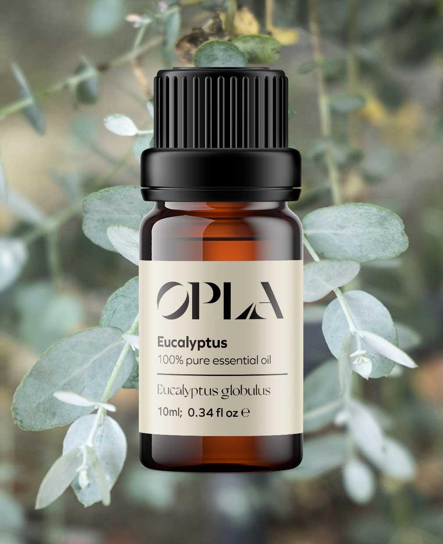 eucalyptus pure essential oil organic