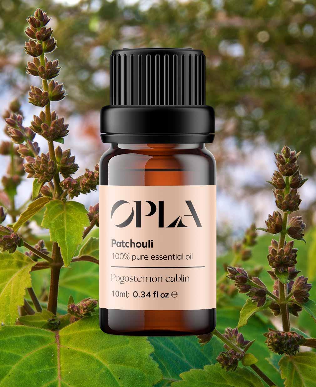 patchouli pure essential oil organic