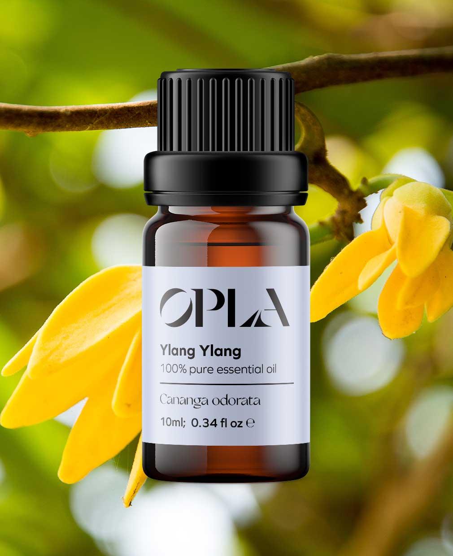 ylang ylang pure essential oil