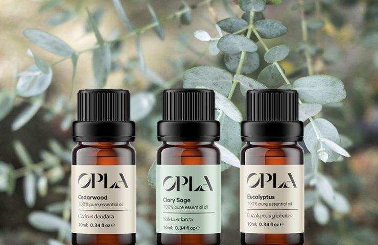 steam distillation of essential oils