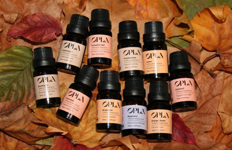 autumn essential oils set
