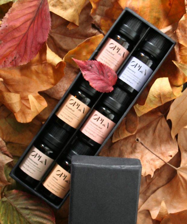 autumn essential oil set